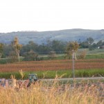 Working Farm Tour