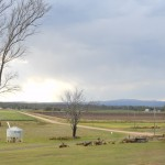Panaramic view overlooking farmland at Stockton Rise Country Retreat, near Laidley and Gatton in the Lockyer Valley.